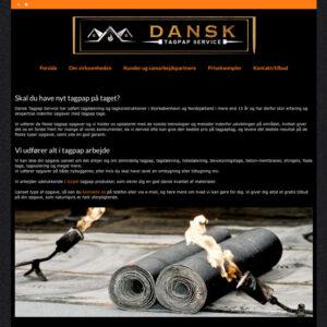 Dansk Tagpap Service